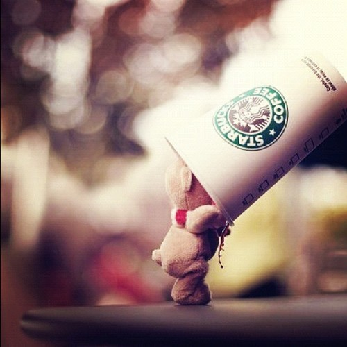 #bear #starbucks #coffee #lights #cute (Taken with Instagram)