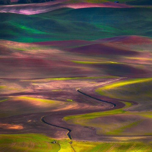 Palouse Hills. Washington.