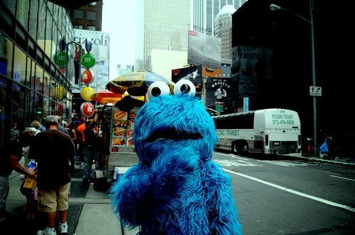 newyork:  cookie monster, lost in times square