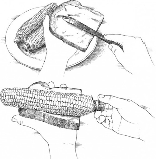 americastestkitchen:  Quick Tip: Buttering Corn With Bread Using a knife to butter an ear of corn can be messy and frustrating, as the melting butter slides off the knife and down the ear. Instead, use a slice of bread. Just spread a thick layer of butter on the bread, then hold it in one hand and roll the hot ear of corn over the buttered bread, evenly coating the corn with butter. For more corn Quick Tips, click here.   Food hacking tips for your summer. :)