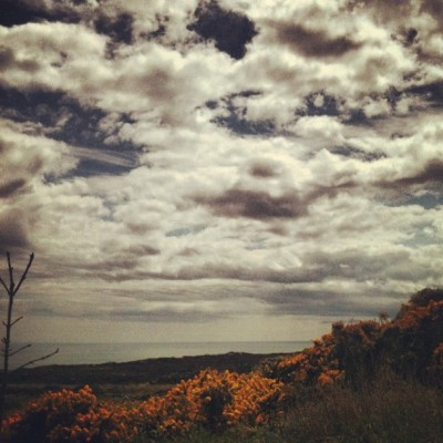 Moors #skyporn #sky #coastline #coast #landscape #plants #plant #flowers #flower #beautiful #clouds #cloud #cloudporn #50likes #100likes #instagood #instagram #iphoneonly #moors #scotland #sea (Taken with Instagram)