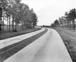 Take Hwy 41 out of Tampa, 1952.