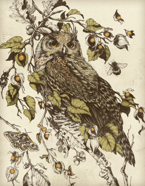 teaganwhite:  Great Horned Owl (originally a tattoo design, please do not get it done as a tattoo yourself, thanks!) buy prints | visit my website