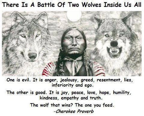 There is a battle of two wolfs inside us all. One is evil. It is anger, jealousy, greed, resentment, lies, inferiority and ego. The other is good. It is joy, peace, love, hope, humility, kindness, empathy and truth. The wold that wins? The one you feed. - Cherokee Proverb