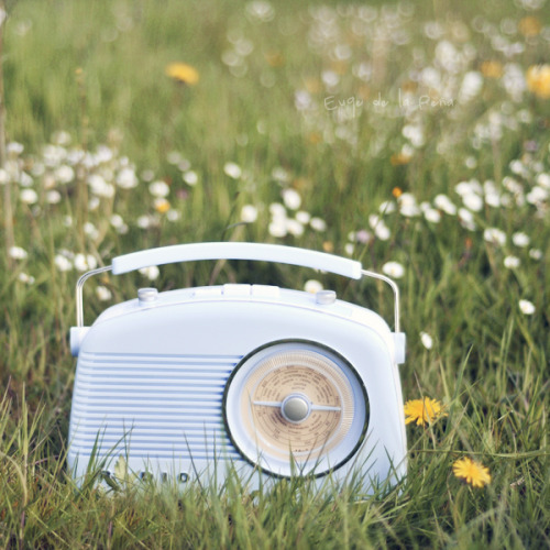 nestprettythings:  My radio by Euge de la Peña on Flickr.