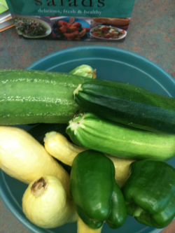 Recent harvest of 10 pounds of fresh produce from the Porter Library SERVE garden! The colossal cucumber is the biggest one I have ever seen!