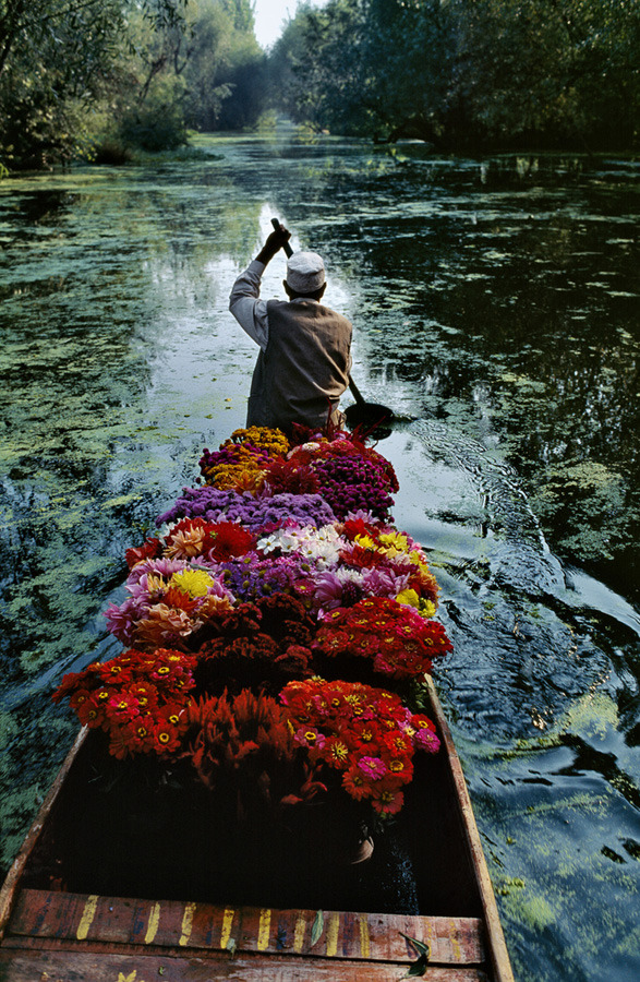 Kashmir flower seller by Steve McCurry