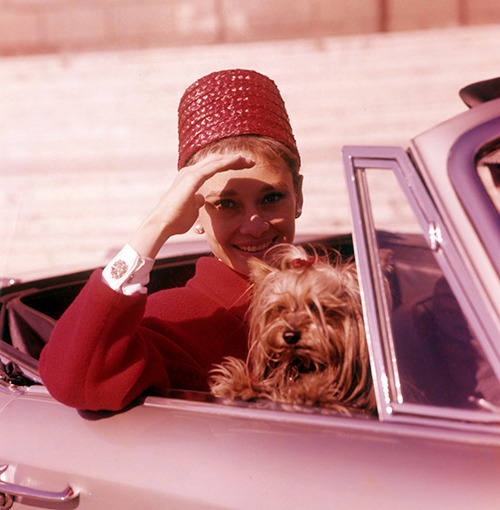 slackseyobrien:  Audrey Hepburn and her dog Famous, early 1960s