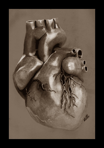 "drfrankscali:  Einthoven's heart Surgeon: ""I want a realistic heart drawn"" Me: ""Let me see what I can do"""