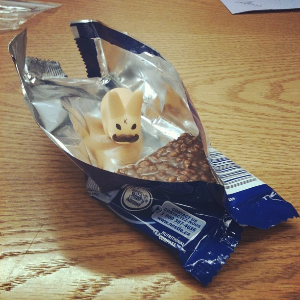 This guy keeps trying to eat my chocolate bar. (Taken with Instagram)