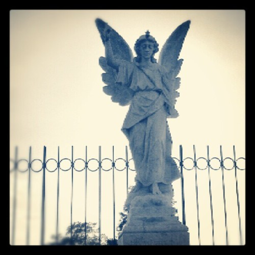 Look homeward, angel. #thomaswolfe #graveyard  (Taken with Instagram)
