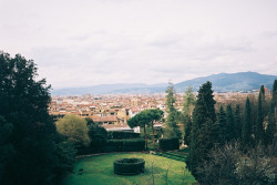 aphelia:  Giardino di Boboli i Giardino Bardini by moniko moniko on Flickr.