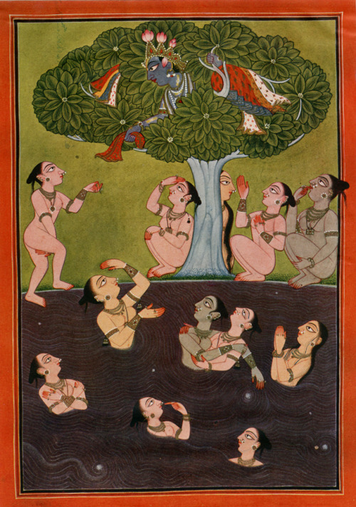 realbroad:   Krishna Stealing the Clothes of Cowherdesses, illustration to the Bhagavata Purana, Tira-Sujanpur, early 18th century
