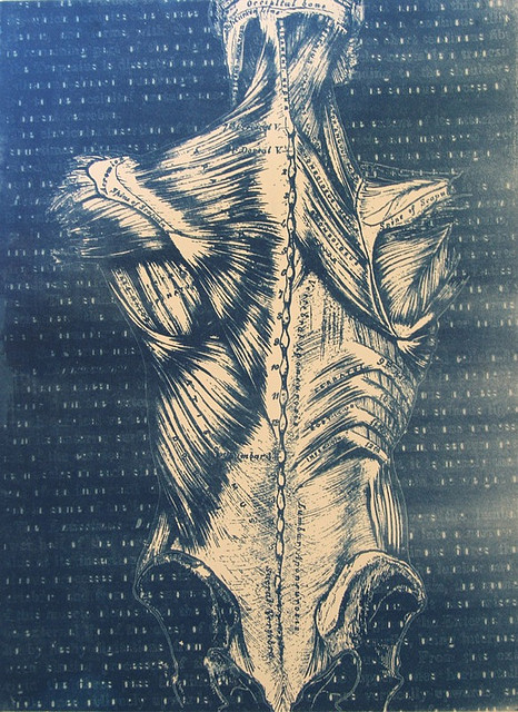 Cyanotype Back.jpg by Noel A. Tanner on Flickr.