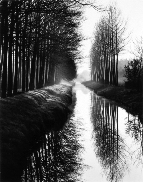 cruello:  Holland Canal, 1971 by Brett Weston via