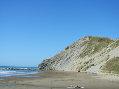 slutty-lipstick:  A Maori reserve beach in New Zealand
