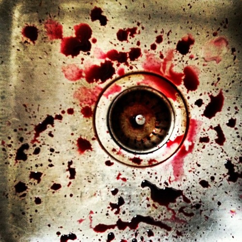 louisewhitman:  beet blood (Taken with Instagram)