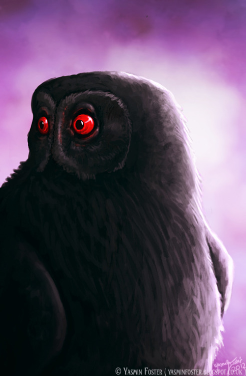"Mothman as an Owl Mothman as an owl has previously been discussed on Cryptid Chronicles with Mark A. Hall's theory about ""Bighoot"" with his sense that Mothman/Bighoot may have developed a protective mimicry that has been utilized by the giant owls to disguise themselves as upright trees and logs lying on the ground.While I don't believe that all Mothman sightings can be misdiagnosed as an animal, I do think with specific qualities reported in some cases such as Mothman having no head but rather a set of eyes in its upper chest and accounts of ""glowing"" eyes lends credence to Mothman as an owl.One of the original eyewitnesses, Linda Scarberry (1966), specifically stated that the effect was related to the car headlights. ""There was no glowing about it until the lights hit it,"" she said. Others echoed her statement. For example, one man, alerted by his dog, aimed his flashlight in the direction of his barn, ""and it picked up two red circles, or eyes, which,"" he said, ""looked like bicycle reflectors"" (Keel 1975, 56). Eyeshine The reflector-like nature of the creature's eyes is revealing. As ornithologists well know, some birds' eyes shine bright red at night when caught in a beam from auto headlights or a flashlight. ""This 'eyeshine' is not the iris color,"" explains an authority, ""but that of the vascular membrane—the tapetum—showing through the translucent pigment layer on the surface of the retina"" (Gill 1994). The TNT area is surrounded by the McClintic Wildlife Management Area—then, as now, a bird sanctuary! Owls, which exhibit crimson eyeshine, populate the area. Indeed, Steve Warner (2002), who works for West Virginia Munitions to produce .50-caliber ammunition in the TNT compound, reported to Joe Nickell, Senior Research Fellow of the Committee for Skeptical Inquiry, that there were ""owls all over this place."" Conversely, neither he nor a coworker, Duane Chatworthy (2002), had ever seen Mothman, although Warner pointed out he had lived in the region all of his life. Because of Mothman's squeaky cry, ""funny little face,"" and other features, including its presence near barns and abandoned buildings, Joe Nickell identified it as the common barn owl (Nickell 2002). One Skeptical Inquirer reader (Long 2002) insisted it was instead a great horned owl which, although not matching certain features so well, does have the advantage of larger size. It seems likely that various owls and even other large birds played Mothman on occasion. Here then is the question separating the mystifiers from the skeptics: Is it more likely that there has long been a previously undiscovered giant species among the order strigiformes (owls), or that some people suddenly encountering a ""monster"" at night have misjudged its size?  Could there be a super large owl living in the north-east at least - in the woods of West Virginian and the Appalachian Mountains which may be a genuine cryptid? There has been evidence of super large owls found in the fossil records in that area dating back several hundreds of thousands of years ago - some with a wingspan of over 4 to 5 feet! That's an owl large enough to easily pick up a large animal and carry it away to a giant nest to feed its young. It could possibly be 4 feet tall while standing with its wings closed! Could you imagine coming upon that thing in the woods at night?So it is JUST possible that at least some reports of the MOTHMAN is not a monster or a demon or a extra-terrestrial after all - but a bonafide ""cryptid"" - a relic of evolution left over from prehistoric times which may have been living deep inside Appalachian mountain hollows for hundreds of thousands of years and has only rarely emerged to be seen by human eyes (and scare them shitless) due to some change or variability in its natural environment or food base. And if you'll pardon the pun… Who (hoo) knows? Perhaps this giant owl has a giant brain that is telepathic and can indeed force you to stand paralyzed just with it's piercing gaze. Maybe, as the Native Americans say, it's even intelligent and has a memory of its history and a spirituality all it's own.There is at least one unconfirmed report of a GIANT OWL swooping down to pick up a small boy out playing in a farm yard in the Appalachian mountains back in the 1930's. The giant owl screeched with such a terrifying sound at the boy's struggling and biting at its feet that the boys father and brother and farm hand heard it from the barn and came out and threw rocks and sticks at it until it dropped the boy from a height of about 15 feet into a soft earthen livestock yard relatively unhurt except for a few scratches and bruises from the giant owl's claws (and probably some hilacious nightmares!!!!).However when the family reported the incident to the local authorities, they were ridiculed and laughed at and eventually came to wish they'd never made the report. But to further confirm their story, possibly the exact same giant owl was seen again about a hundred miles away not more than three months later by a well-respected and sober business man out on a solitary fishing and hunting trip up in the Appalachians. The shaken fellow who reported seeing the giant owl fly over head with the limp carcass of a dark brown horse dangling from it talons said it was the most terrifying moment of his entire life. He said every hair on his body stood on end when that giant bird flew over with a roaring whooosh and looked down at him for just a second with those large, piercing eyes… ""I know exactly what a field mouse feels like now when he spots an owl swooping down from overhead… with those DAMNED EYES that cut right into ya and turn your blood to ice… and it ain't a good feelin' let me tell ya…""Cow carcass found on telephone wire in Winslow N.J. in 1960'sDeer up 22 Foot Pole in the Northeast U.S.: Source-Coast to Coast Enormous prehistoric owls may have migrated from Cuba to a town near you In the piney mountains and desert mesas of south central New Mexico, residents of the Mescalero Apache Indian Reservation still share the legends of an enormous and evil bird: Big Owl. The Jicarilla Apaches, along the state's northern edge, also talk of Big Owl, beneath the slickrock canyons and gray bluffs of their reservation. But in their stories, Big Owl can paralyze humans just by staring at them, and after doing so, it swallows them whole, just as smaller owls swallow mice. Such stories may actually have a basis in fact, citing accounts of an actual undocumented species of 3-to-5-foot-tall giant owl (Bighoot). Ornimegalonyx oteroi, or the Cuban giant owl, was an approximately 3-foot-tall owl that lived in what's now western Cuba up until about 8,000 years ago. In the last few decades, three nearly intact skeletons of this bird have been found in Cuban caves, and their size and bone structure suggest this owl was similar to an oversized version of the common burrowing owl, with long legs and an ability to fly only short distances. Perhaps some giant owls survived extinction, migrated, reproduced and became part of New Mexico's Apache oral histories - and there are a number of intriguing points that support his case. Mentions of giant owls occur throughout the mythology of American- and Canadian-Indian tribes. Many Iroquois once feared what they called Flying Heads - man-sized, bodiless, open-mouthed heads covered in ragged hair - heads that could fly in a halting way, were armed with talons and craved humans which Mark A. Hall has theorized were actually giant owls. Sightings of giant owls continued into the era of North America's first European-American settlers. Hall said some settlers saw their livestock carried off by enormous birds they called booger owls, and such sightings have persisted into the present, across America and across the Southwest. In a chapter of Cryptozoology and the Investigation of Lesser-Known Mystery Animals, New Mexico journalist Jerry A. Padilla recounted a Taos woman's encounter with an owl she estimated to be at least 4 1/2 feet tall. This incident reportedly took place in the 1950s, not far north of the New Mexico-Colorado state line, when Taos resident Rosa M. Lucero was a little girl. Lucero recalled the giant owl wandering silently from a cluster of willows, walking back and forth and just staring at her and her grandmother, Elena Bustos Lucero, as the two of them frantically gestured the sign of the cross. ""It just walked around in the garden by the willows,"" Rosa M. Lucero said in the above-mentioned book. ""My grandmother was convinced it was a nagual - someone taking the form of an owl - because she herself said that in all her long life she'd never encountered an owl so large and unafraid of people."" Though generally described as making a hooting sound, owls are sometimes also said to hum. The Internet is studded with mentions of owls humming as coyotes howl, owls humming the sounds of the night and barn owls humming people to sleep. Taos Tales, by Elsie Clews Parsons, includes a northern New Mexico oral history of a coyote who ""went singing and at the end of every song he said like the owl, hum! hum! (grunt)."" A much better-known hum in northern New Mexico is the notorious Taos Hum - a low, pulsing throb of a sound that torments about 2 percent of Taos's population, causing anxiety, dizziness, headaches, nosebleeds and insomnia. Many people have suggested possible explanations - a government project, aliens, mass hysteria - but the Hum's cause remains unknown. Would it be ridiculous, though, to suggest that maybe, just maybe, the Taos Hum might be caused by man-sized owls - the Bighoot - humming throughout the New Mexico woods? This evidence presents a somewhat rational explanation for the Mothman as some giant bastard owl. Whether a mutation or relic animal, one this for certain - happening upon one would be an unnerving encounter.Sources csicop.org/sb/show/mothman_revisitedinvestigating_on_site, blogster.com/anaibendai/mothman-mystery-solved, s8int.com/eyewit12.html, dailylobo.com/index.php/article/2007/04/enormous_prehistoric_owls_may_have_migrated_from_cuba_to_a_town_near_you Top illustration credit Copyright © Yasmin FosterI would like to thank Yasmin Foster for her generous contribution of the gorgeous artwork, it's a very neat interepretation of Mothman as an actual owl. Please check out more of her artwork at http://yasminfoster.blogspot.com Cryptid Chronicles readers, what do YOU think??  ★★★ Cryptid Fans — Don't miss our 200th post giveaway! ★★★"