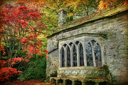 allthingseurope:  Stourhead, UK (by sminky_pinky100 (In and Out))