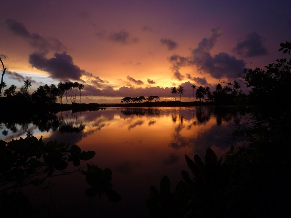 (vía Sri Lanka Picture - Sunset Wallpaper - National Geographic Photo of the Day)