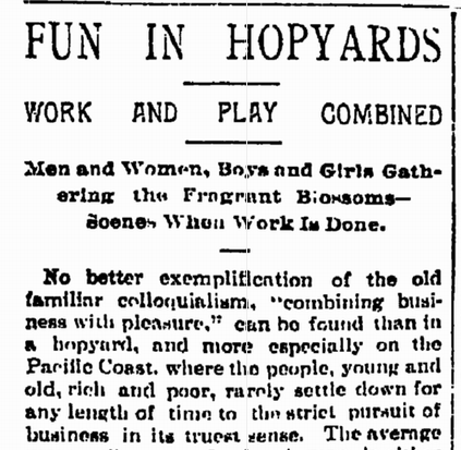 """Fun in Hopyards - Work and Play Combined"", September 4th 1892.  A somewhat, um, romanticized look at the year's hop harvest, then in progress.  The subheading reads ""Men and Women, Boys and Girls Gather the Fragrant Blossoms"", and the article continues along in that vein for quite some time.  The general impression I get is that our intrepid reporter — named only J.D.M here — spent a lot of time watching the hop harvest, but didn't actually speak to a single picker, much less try his or her hand at the picking work.  Some choice quotes:  Life in a hopyard can hardly be classed as work, but the pickers, nevertheless, are paid for their frolicsome duties, and thousands of dollars are circulated in the world's markets as a result of their summer outing.  In seasons such as the present, where picking is commenced early and the chilly mantle of winter casts no gloom over the bright fields, thousands of men, women, and children may be seen in any of the hop-growing districts of the state, industriously plucking the bright, green blossoms, casting them into boxes and making the surrounding country ring with their merry songs and jests.  There are good hop-pickers, and pickers of an indifferent sort, and extremely slow pickers, but every little hepls and in the end the coffers of the speculative dealers are filled, and the state is advanced a notch as a productive center. … When the season opens, entire families in the country districts prepare to depart for the hopyards, with as much pleasant anticipation and longing as does the family of the city business man preparatory to starting for a fashionable watering resort.   … Boys and girls are quicker at the work than men and women, their fingers being more supple, and box after box is filled, to the benefit of the family bank account, if such there be. … Evening comes and the hop-pickers wend their way to the camp (their tents all cluster in the same vicinity), and preparations are made for the evening meal.  Some have supplied themselves with old stove grates, while others are content with simple log fires and the proverbial tripod, to which is suspended the stew pot or the coffee urn.  The log fires throw a cheerful glow from out the darkness, and the scene throughout is, to say the least, picturesque.  Gathered in groups around the blazing logs, sit men and women engaged in conversation, while the younger folks of both sexes flit around like butterflies among the camp fires.  In some of the larger hopyards dancing platforms have been erected, and here, to the strains of a wind or string instrument manipulated by one of the party, the young people enjoy themselves until bedtime arrives.  In all yards, large and small, Saturday night brings with it scenes of extensive merry-making, because there is no work Sunday, and the pickers may occupy their time as they please until Monday morning. … In order to reach the yeard it is necessary to ford the river, and should the visitor arrive about sundown, the eye is greeted by a long line of snow-white tents, which stand out in bold relief against a background of tall trees and flickering camp fires.  Hundreds of faces are clustered around, and the hum of voices and echoes of laughter lend enchantment to the scene.   From there, the article changes gears and switches into a rather dry and technical description of the sorting, drying, and packaging process as it was in 1892."