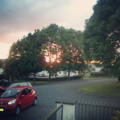 #20dayinstagramchallenge #day10 #sunset through the trees outside my house :) #trees #ireland  (Taken with Instagram)