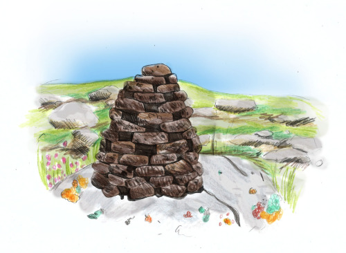 All over the hills of Lewis you will find peat stacks designed for optimum drying and craft in construction.  Peats are cut annually to fuel the fires and heat the homes of the Hebrideans throughout the winter. Peat is formed from decayed vegetation usually consisting of bog plants such as mosses and shrubs. These wetlands are a unique habitat for many kinds of fauna and flora and although small scale peat cutting does limited damage, commercial peat cutting and drainage can destroy these delicate ecosystems and release large amounts of stored carbon into the atmosphere.