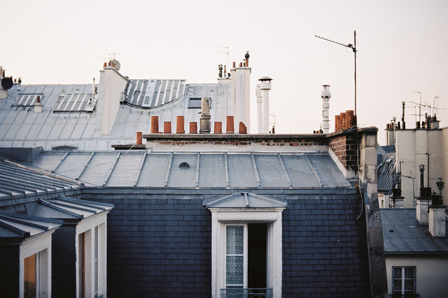 n1ente:  parisroof. by -MRGT on Flickr.