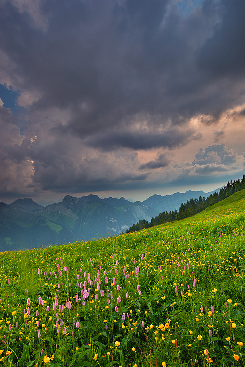 agoodthinghappened:  Atop Alps by ~Fishermang  Lindo demais!!!!!!