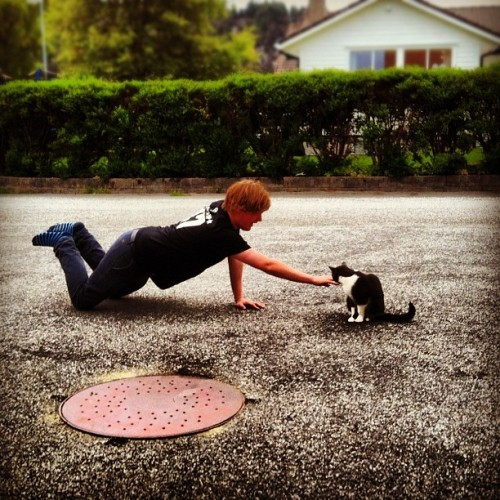 @sixaxix94 is trying to contect with Diesel! #cat #norway #haugesund (Taken with Instagram)
