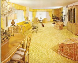 Burdines Model home- Florida spaces 1960's . It's like the sun came down and threw up. Classic.