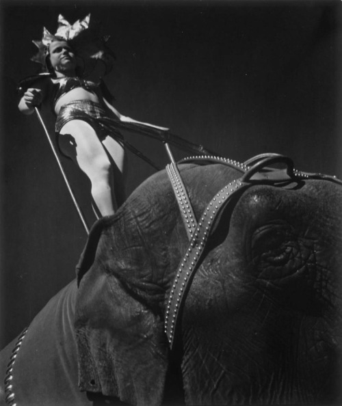 onlyoldphotography:  John Gutmann: High ride, 1937