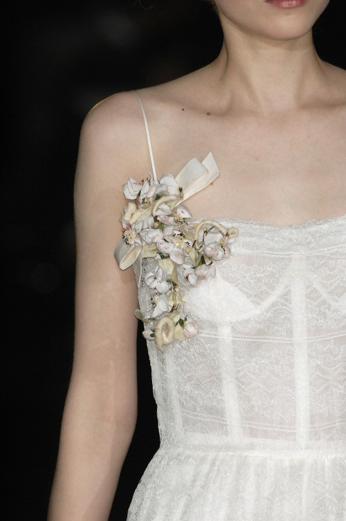 english-rose:  Roberto Cavalli  Fall 2008