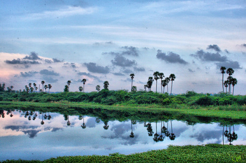 Pallavaram scenery by SurveySan on Flickr.