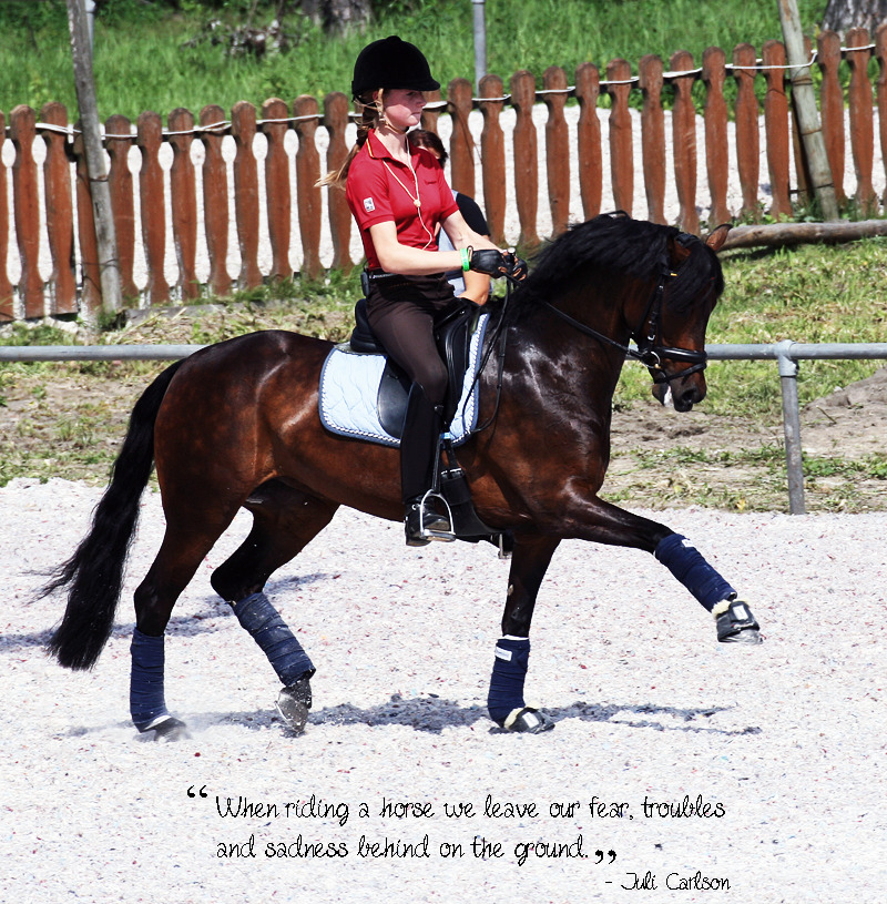 "dressagedelight:  Quote - ""When riding a horse we leave our fear, troubles and sadness behind on the ground.""  I'm really in an European championships-mood! I took this picture during the European championships for ponies in Poland, 2011. Still only done the editing in photoshop elements, so I'm sorry about the sucky effects."