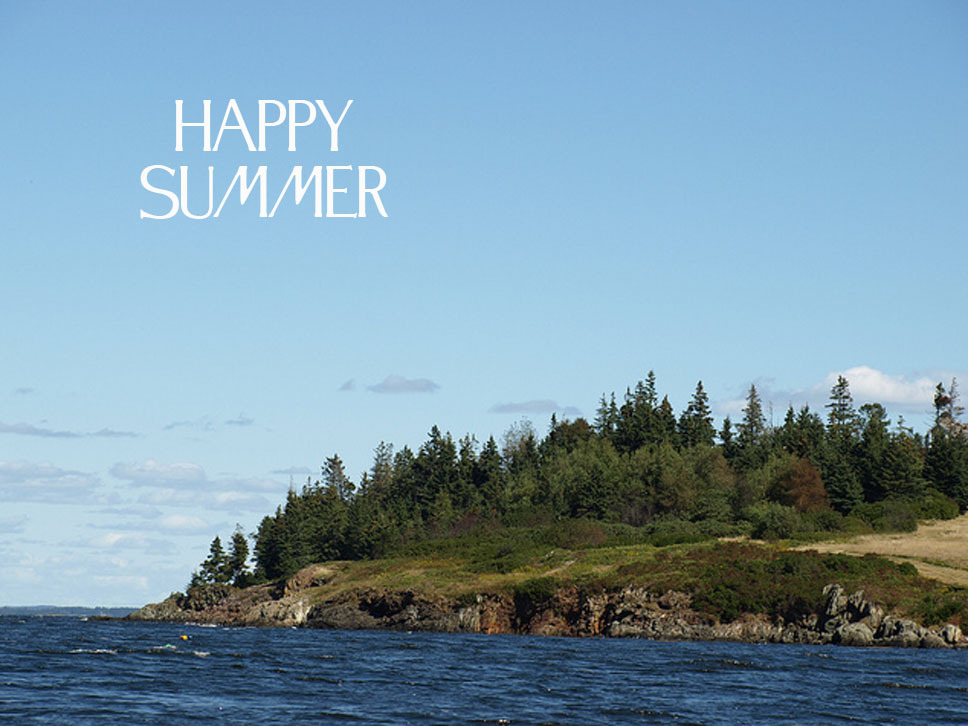 Happy summer solstice everyone!