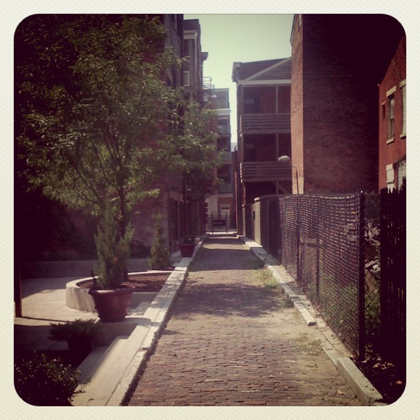 #thisisotr Parvis Alley (Taken with Instagram)