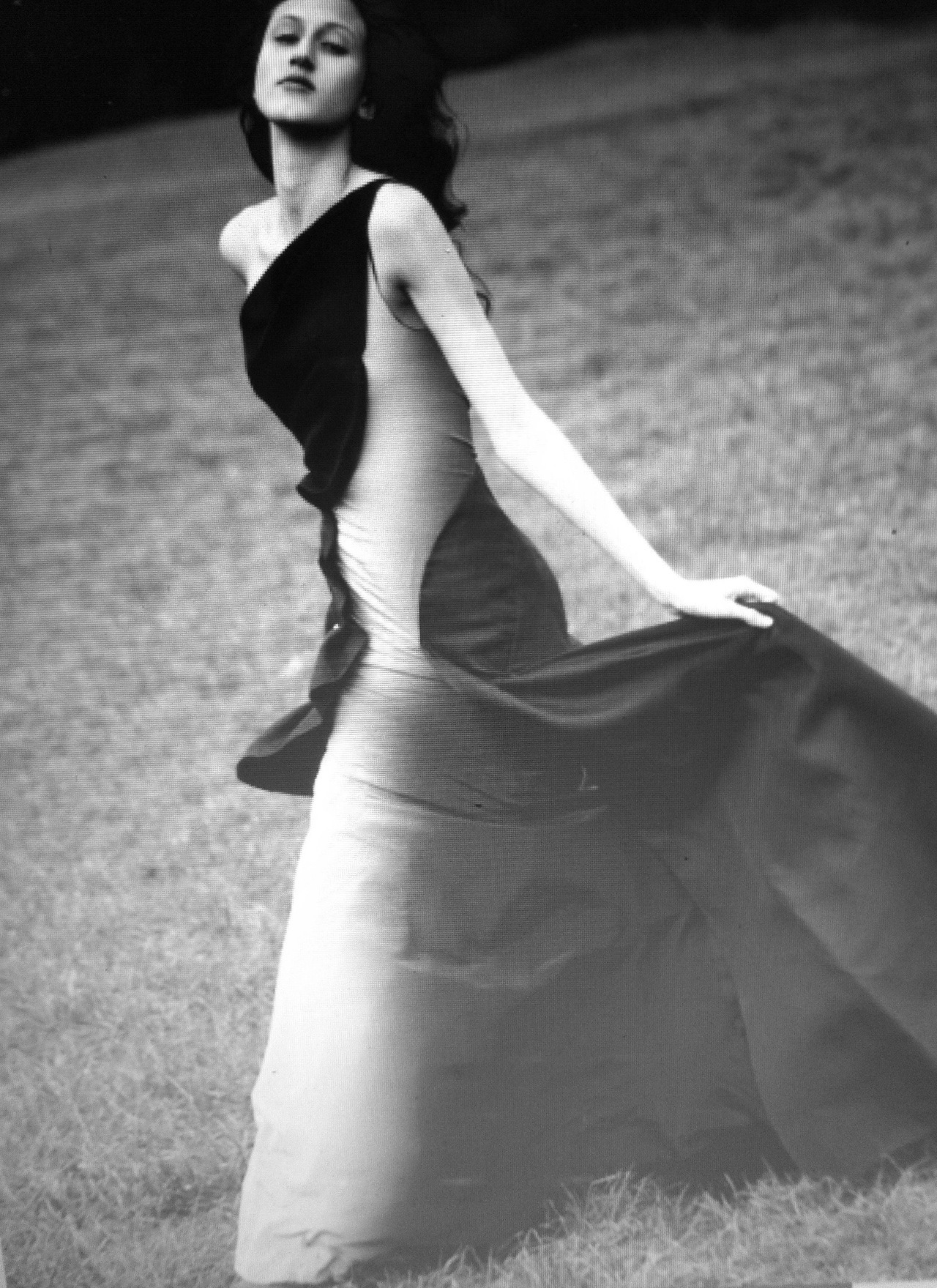 beautiful anna cleveland photographed wearing zac posen by david armstrong for purple magazine