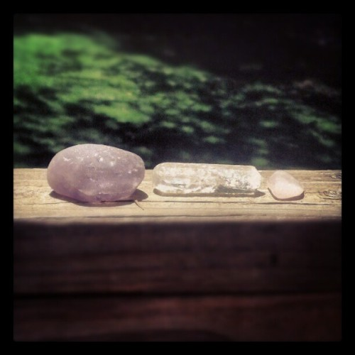cosmicwolfgirl:  River amethyst, clear quartz, and rose quartz (Taken with Instagram)  Monica, imagine finding amethyst while treasure hunting in the river!! :)