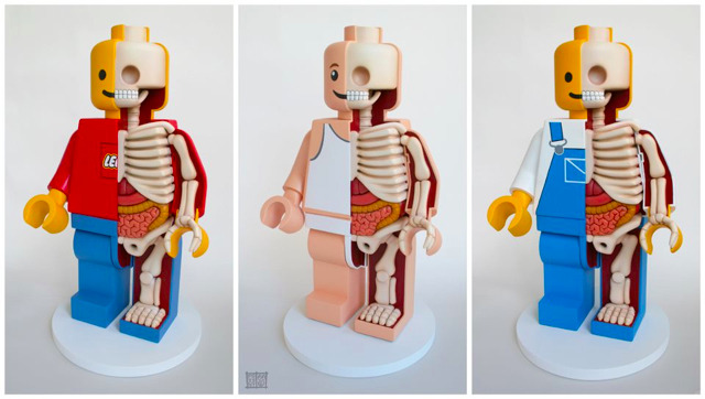 poptech:  Extra-Large LEGO Men Dissections by Jason Freeny (via laughingsquid)