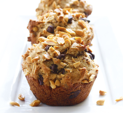 beauty-andthe-feast:  Whole Wheat Peanut Butter Muffins