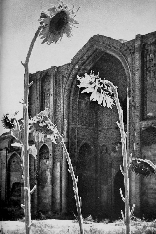 A view of the mosque in Varamin, Iran, photographed by Bruce Chatwin in 1970 and featured in Peter Levi's book The Light Garden of the Angel King: Travels in Afghanistan with Bruce Chatwin. Thank you, touba.