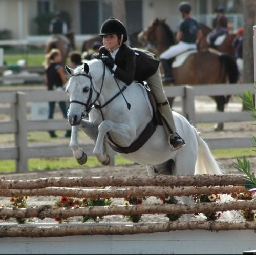 stirrups:  lifelongponies:  Reed Kessler in the pony days!  On Cardiff Mardi Gras