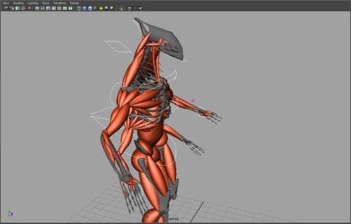 Just finished the muscles. Now it is time to sculpt.