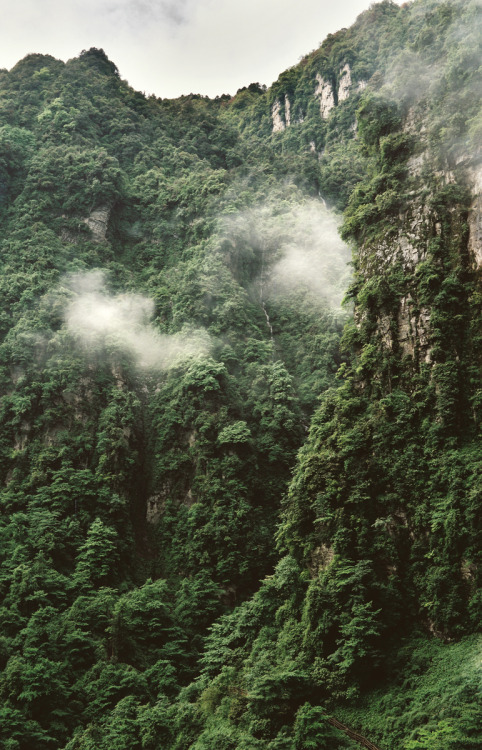 south-pole:  Emei Shan I by lylevincent
