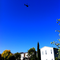 Yes, please, more military helicopters flying over the neighborhood. Sooooo comforting.