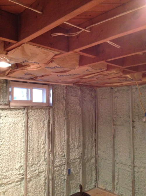 Started insulating the ceiling today, do of course it's close to a hundred degrees. Had a hiccup with the electrical work this weekend as one of the electricians decided not to show up AND was a dick about it. So now completion date is a little pushed back but hopeful that it's only by a week. Amazing how a project started in March can drag on… More pics to come.