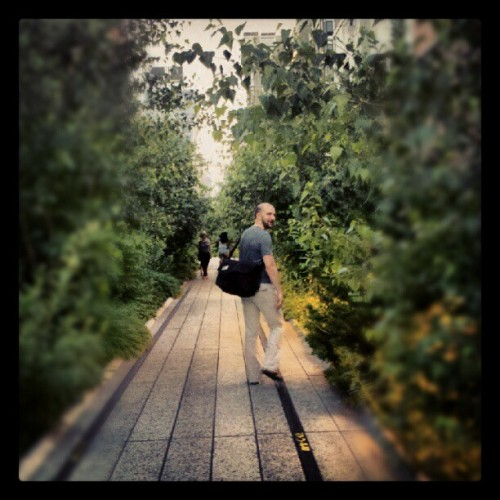 #highline #trees  (Taken with Instagram)
