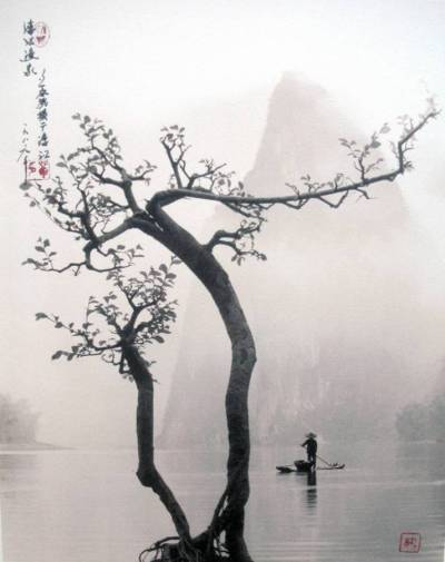 muirgilsdream:  Untitled, Don Hong-Oai, photographer.