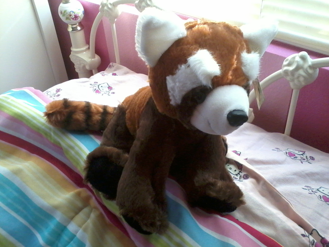 I got a red panda fire ferret today >:D